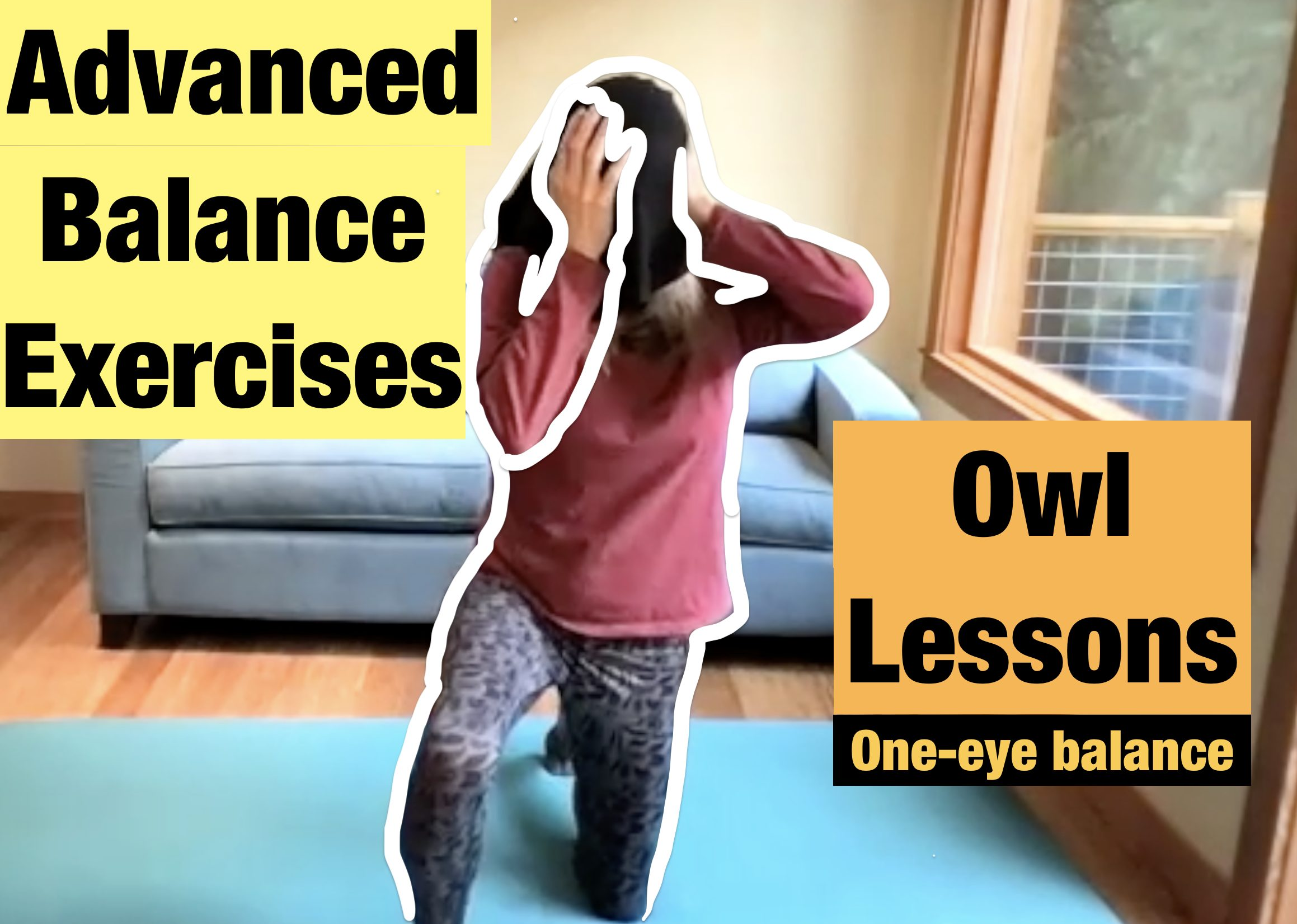 Advanced Balance Exercises - One Eye Balance with Owl Lessons